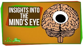 New Insights Into 'The Mind's Eye'
