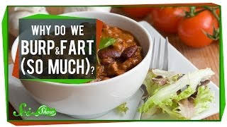Why Do We Burp and Fart (So Much)?!