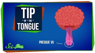 How Words Get Stuck on the Tip of Your Tongue